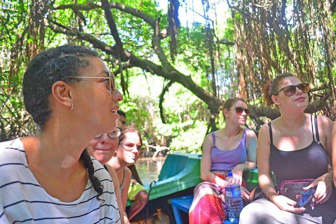 Bentota River Safari ( Boat Safari )