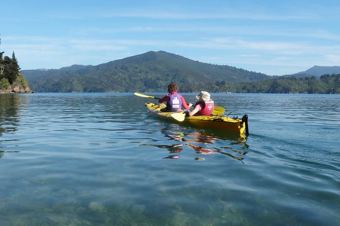 Half-Day Guided Sea Kayak Trip from Picton