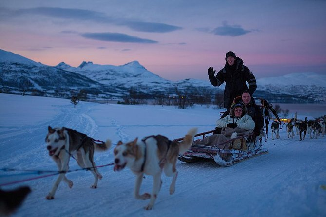 Giro Serale in Slitta Trainata da Husky a Tromso 2020