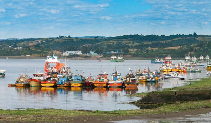 Puerto Varas: Full-Day Tour Chiloe Island: Ancud - Castro and Dalcahue