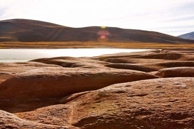San Pedro de Atacama: Full day Altiplanic lagoons, include breakfast and lunch.