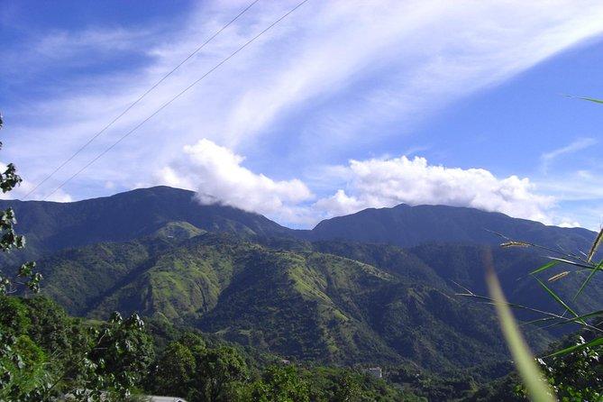 Jamaica's Blue Mountain Hike & Coffee Tour from Runaway Bay