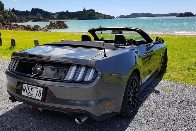 Private Mustang GT Tour from Bay of Islands
