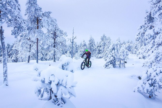Scenic electric fatbike ride for beginners