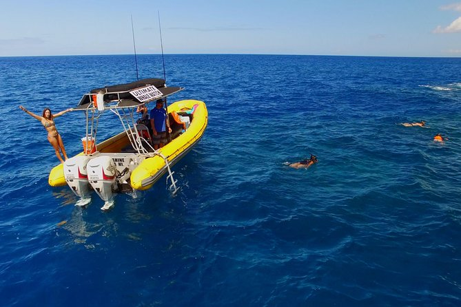 6-Hour Lanai Snorkel Dolphin Extended Tour from Lahaina Harbor