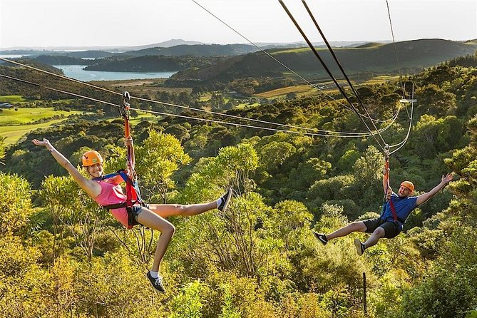 Auckland Shore Excursion: Waiheke Island Tour and Zipline Adventure