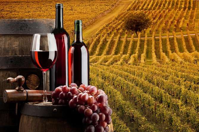 Bella Toscana Private Tour: 2 Chianti Wineries and San Gimignano From Livorno