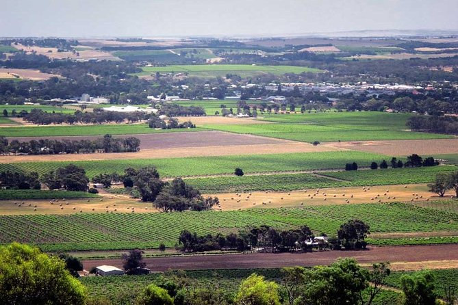 Northern Barossa Valley from Adelaide or Glenelg photo 1