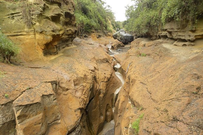 Day Tour to Lake Naivasha and Hells Gate Park