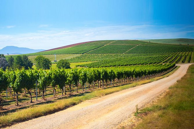 Full Day Tamar Valley Wine Tour