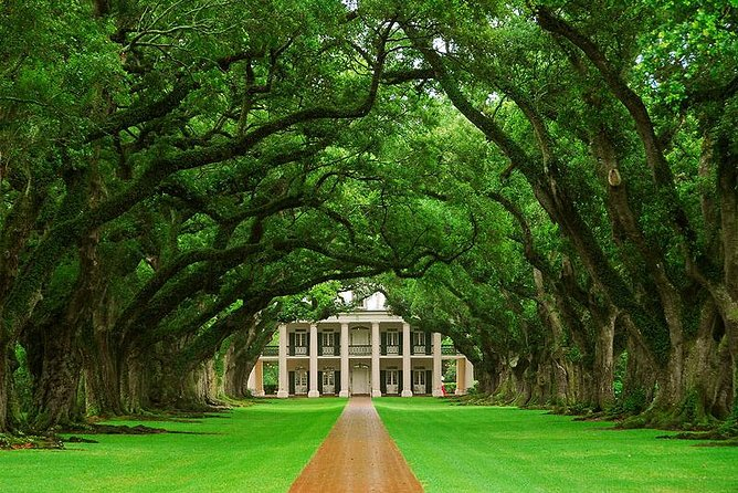 Oak Alley Plantation Tour from New Orleans