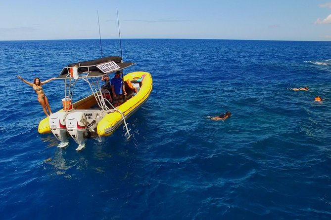 4-Hour Lanai Snorkel Dolphin Express Tour from Lahaina Harbor