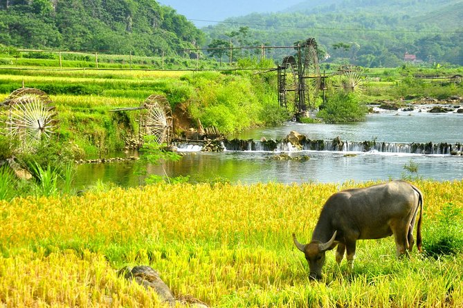 Pu Luong Retreat - 2 Days 1 Night Tour From Hanoi