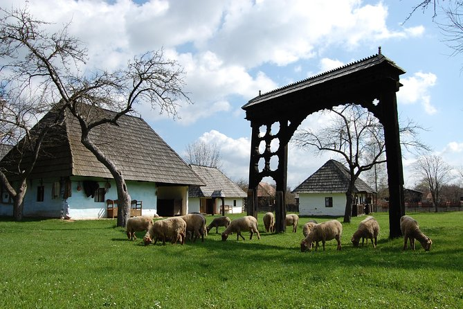 3-Day Trip from Brasov: Medieval Sites, Bears, Old Crafts and Scenic Nature