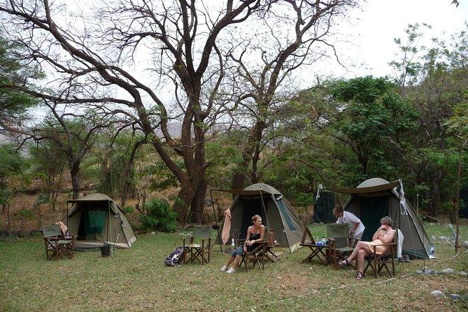 8Day Amazing Northern Tanzania Safari