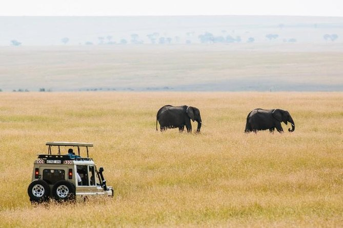 4 Days Tanzania lodging safari: Tarangire, Serengeti & Ngorongoro crater photo 1