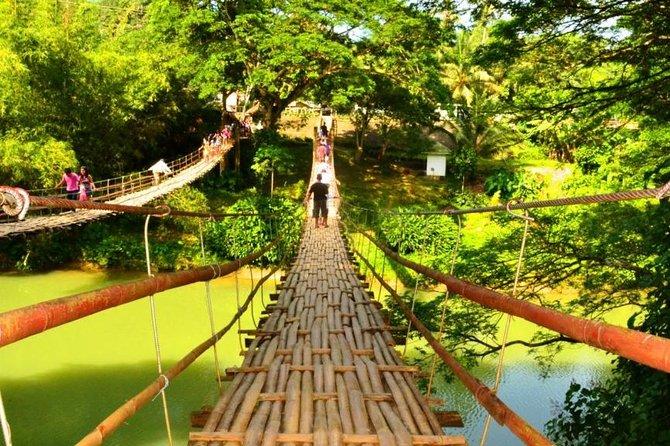 Bohol Countryside Day Tour