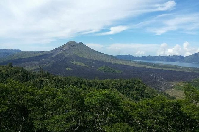 Ubud & Kintamani Volcano Private Tour