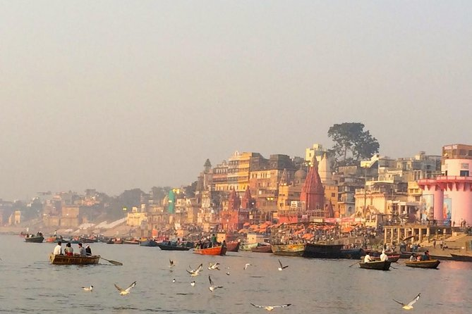 Complete tour of varanasi with official guide