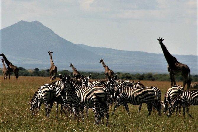 Six Days- Arusha-lake Manyara- Ngorngoro-serengeti (classic)