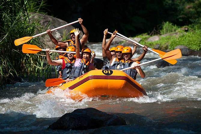 Rafting & Ubud Monkey Tour