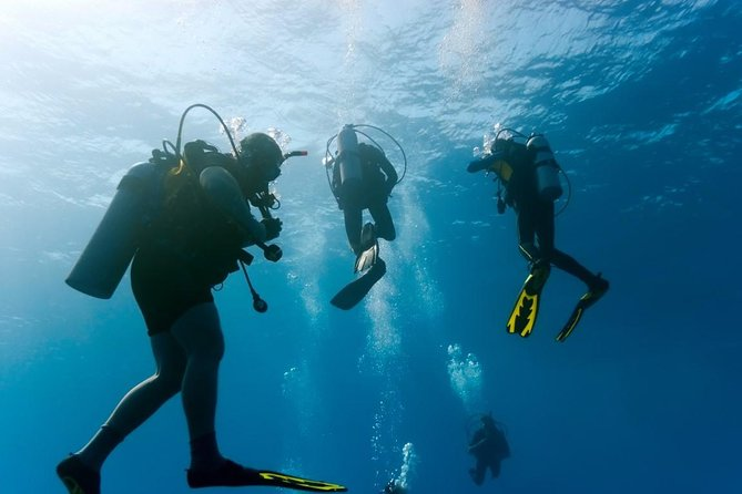Dive Trip in Hurghada with 2 Dive Sites