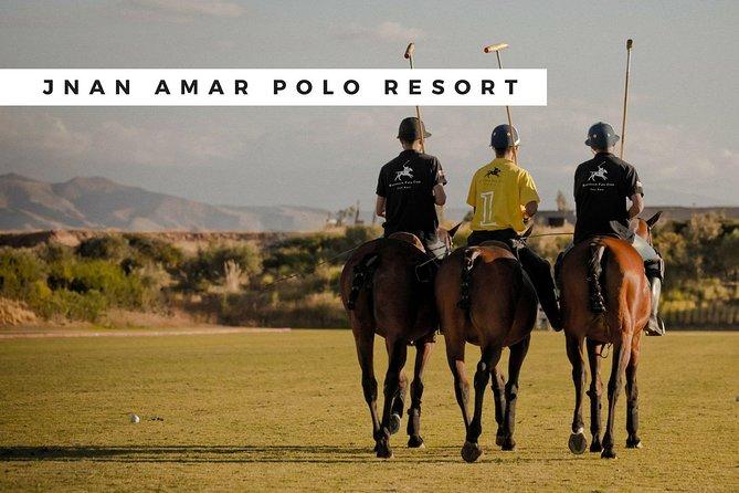 Intro to Polo Lesson