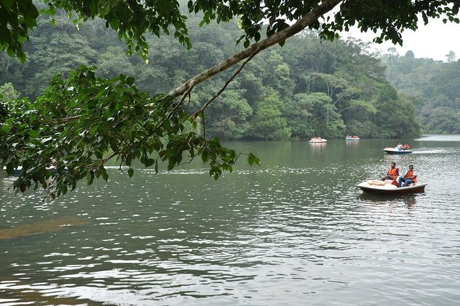 3 Days All Meals Wayanad Homestay Package from Bangalore