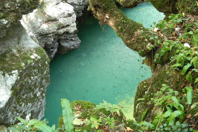Martvili Canyon and Prometheus Caves Private Tour