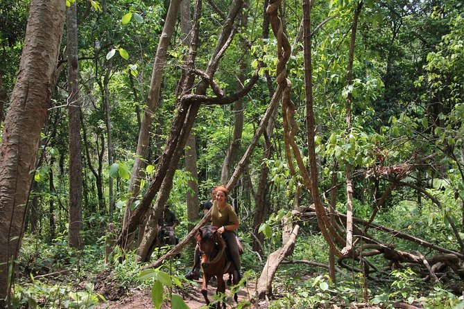 One-day horseback riding adventure near Chiang Mai