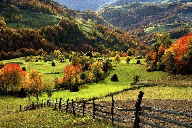 Zlatibor mountain