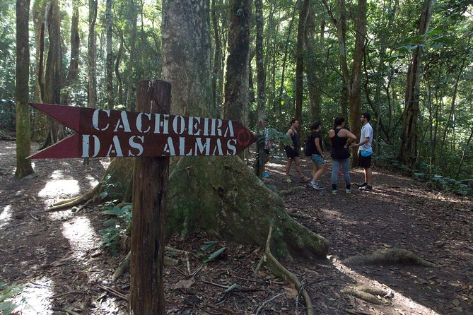 2 Days in Rio: Tijuca Forest & Two Brothers Hiking Tours