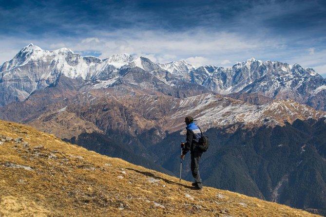 Brahmatal Trek from Kathgodam - 6 Day Expedition
