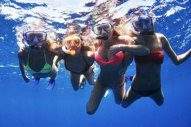 Snorkeling tour to Catalina islands