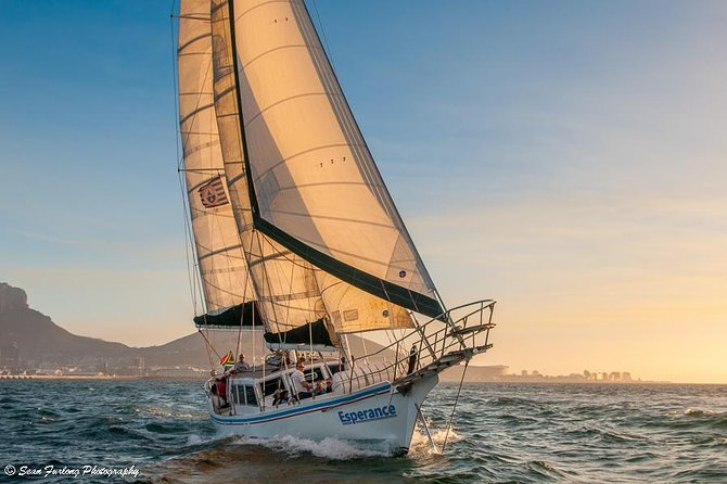 Sailing in The Bay (One Hour)