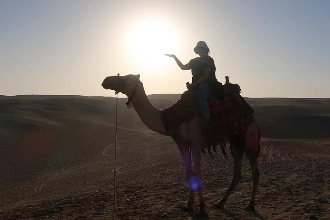 Private Tour: Camel Ride at Giza Pyramids During Sunset