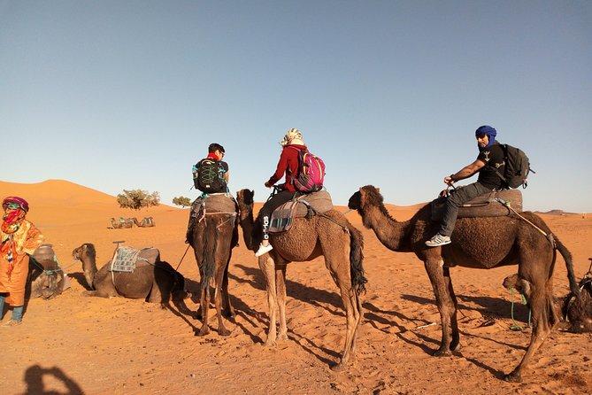 Fes desert tour to Marrakech in 3 days