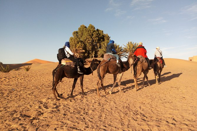 Marrakech to Merzouga desert tours 3 days