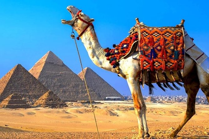 Private Day Tour Giza Pyramids, Egyptian Museum and Bazaar and Camel Ride