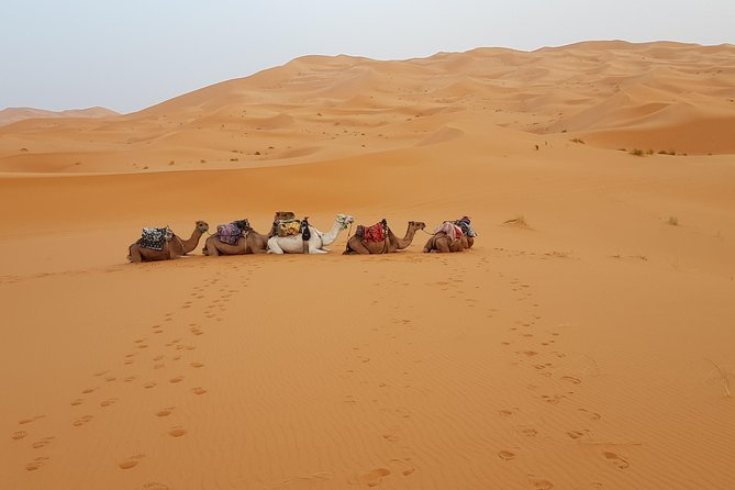 Private 4 Days Desert tours from Marrakech photo 1