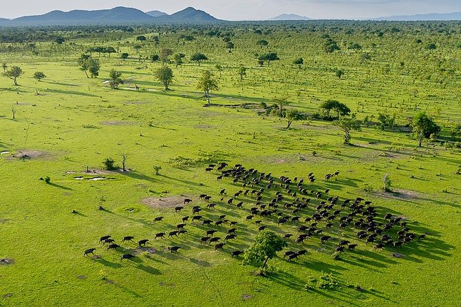 3 Days - Selous Game Reserves