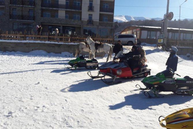 Full day tour to Borjomi Park and Bakuriani Skiing resort for Winter activities