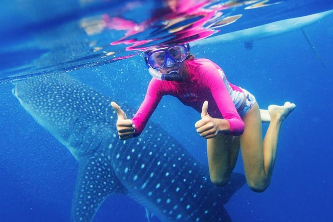 Oslob Whale Shark Swimming and Kawasan Falls Canyoneering