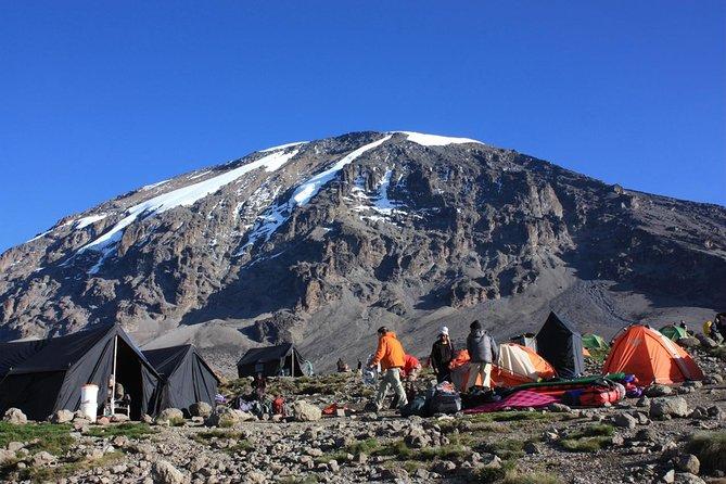 7 Days Kili Climb Via Machame Route