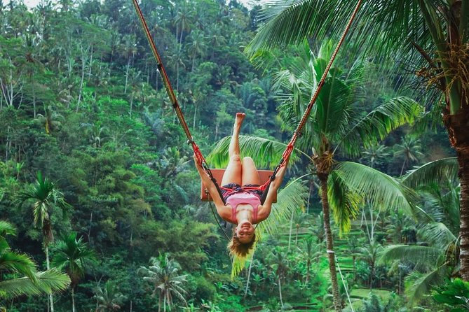 Jungle Swing and Nungnung Hidden Waterfall Tour