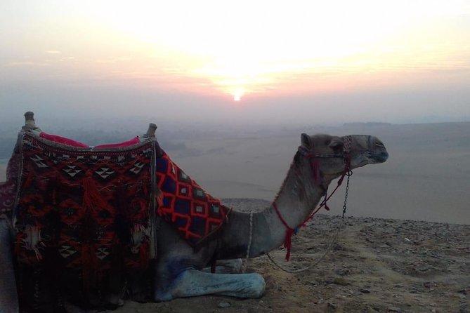 Giza Pyramids sunrise & Sphinx with Camle Riding