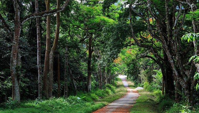 Private Transfer Round Trip to Ba Vi National Park from Hanoi (for sightseeing)