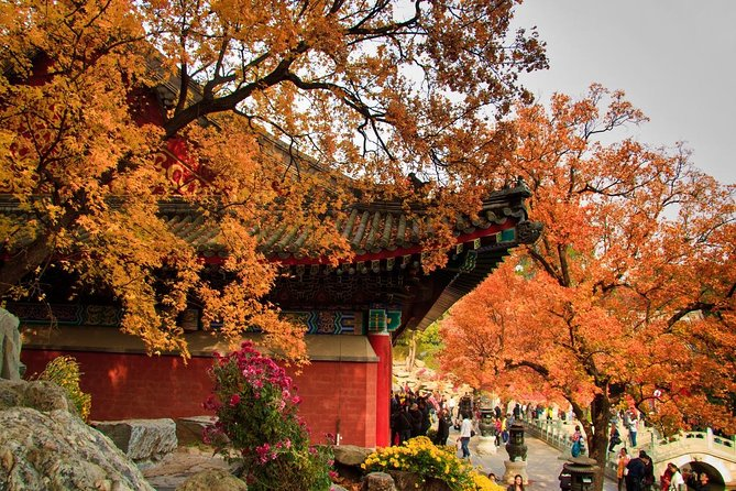 Private Round Trip Transfer to Fragrant Hill in Beijing