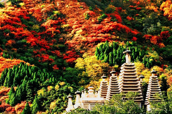 Beijing Private Tour to Fragrant Hill and Temple of Azure Clouds with Cable Car
