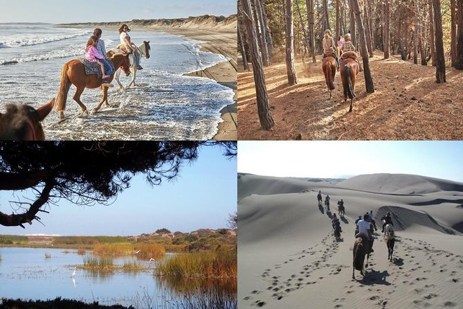 HorseRiding And 4x4 Trip by Ritoque Sand Dunes - Valparaiso
